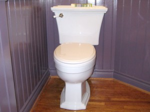Toronto Toilet Replacement